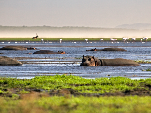 Photo: NatGeo Africa